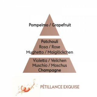 Parfum de Maison Petillance Exquise 500ml